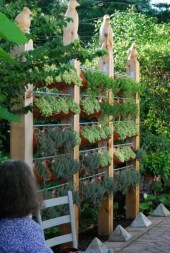 Extraordinary Vegetables Garden Ideas For Backyard 10