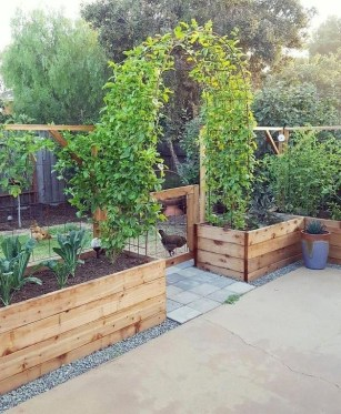 Extraordinary Vegetables Garden Ideas For Backyard 15