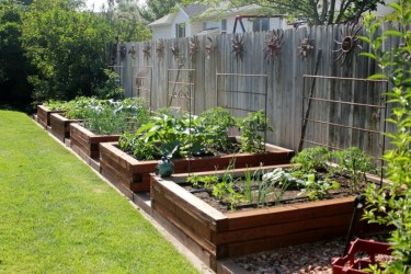 Extraordinary Vegetables Garden Ideas For Backyard 23