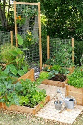 Extraordinary Vegetables Garden Ideas For Backyard 38