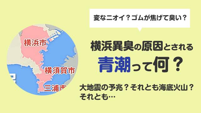"""横浜駅の異臭騒ぎの原因は青潮?それとも…地震の""""予兆""""によるものか?"""