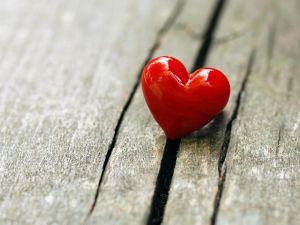 ಹ್ರುದಯ, ಒಲವು, Heart, Love