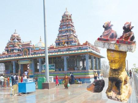 chikkadavamma betta, ಚಿಕ್ಕದೇವಮ್ಮ ಬೆಟ್ಟ, hill station