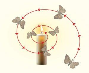 ಪತಂದ, ದೀಪ, Moth, Flame
