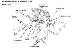 Engine partment hose diagram B18C1?  HondaTech