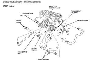 Engine partment hose diagram B18C1?  HondaTech