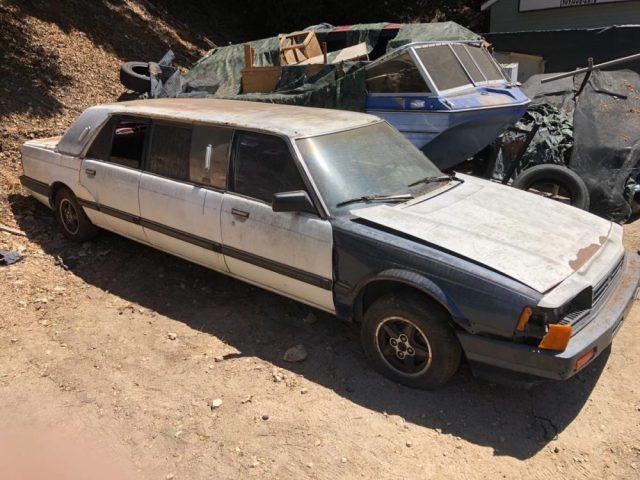 1984 Honda Accord Limo