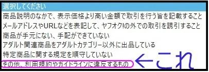 ヤフオク違反申告15-2