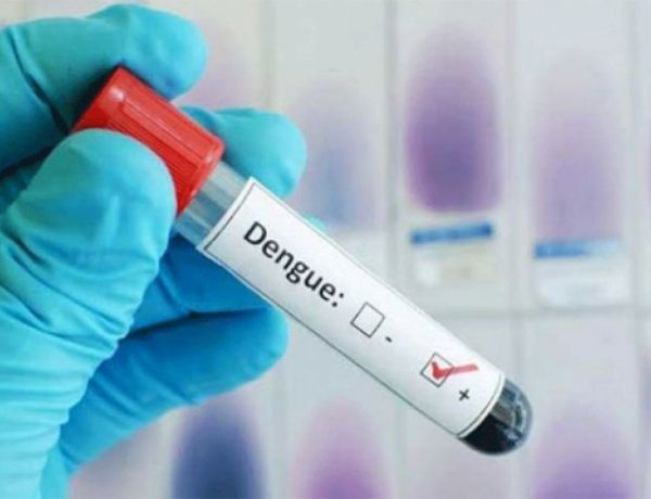 Ya van 54 muertes por dengue