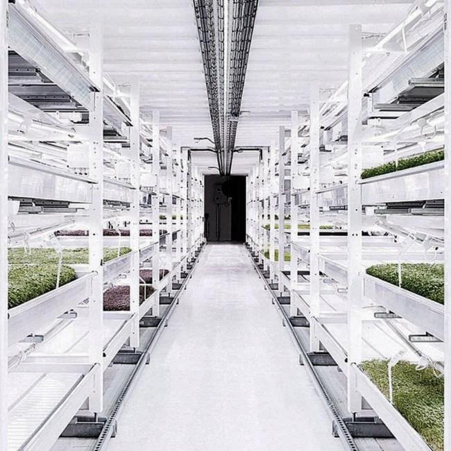 agriculture bunker 1 sous sol