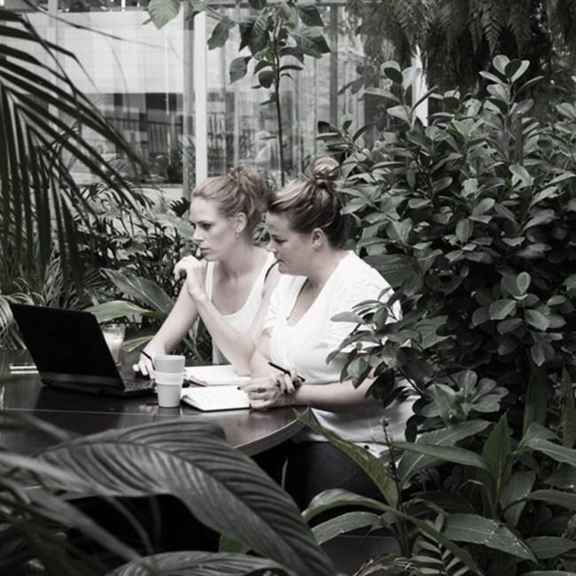ARCHITECTURE BIOPHILIQUE femme espace travail