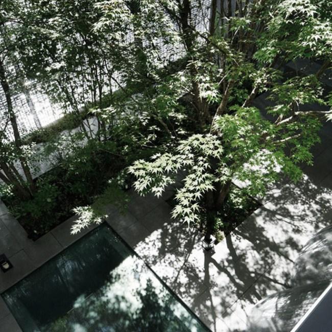 hiroshima espace verte plantes