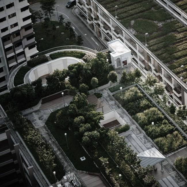agriculture urbaine covid-19