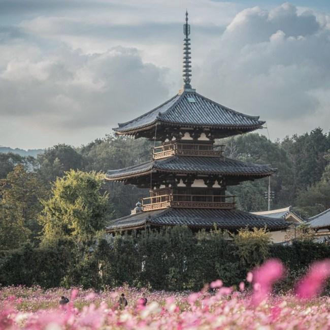 architecture traditionnelle japonaise