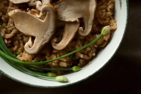 Image result for pine mushroom dishes