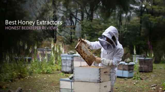 best honey extractor for beginners - Honest Beekeeper