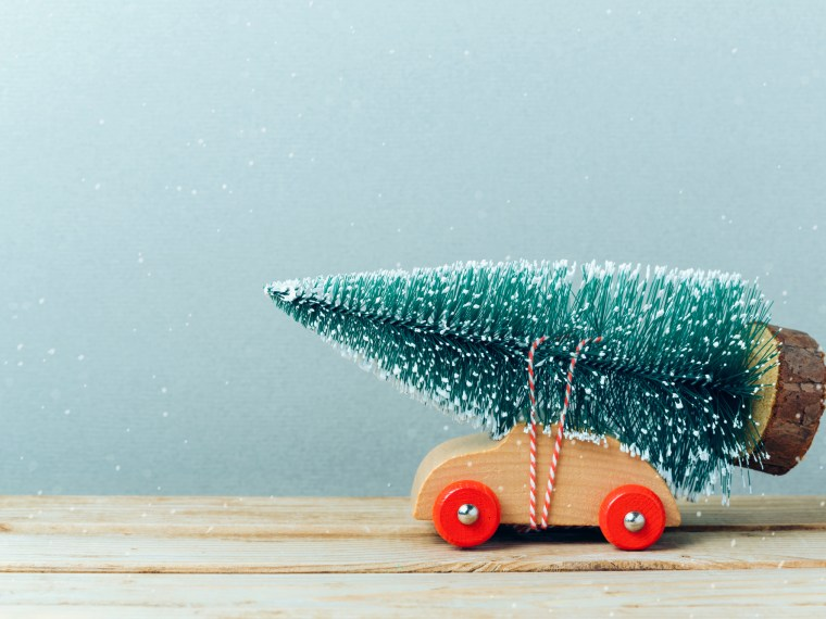 Wooden toy car with bottle brush tree on top