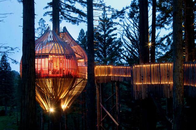 Yellow Treehouse Restaurant New Zealand