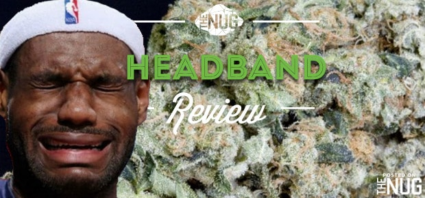 The 50 Best Weed Strains: 25 Greatest Strains Of All Time · High