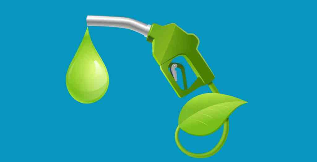 Pros and Cons of Biofuel