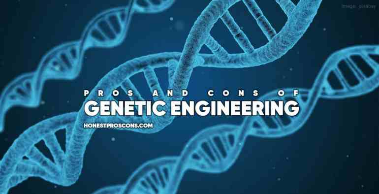 Pros and Cons of Genetic Engineering