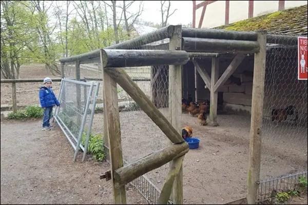 Hühnerstall Hessenpark im Taunus