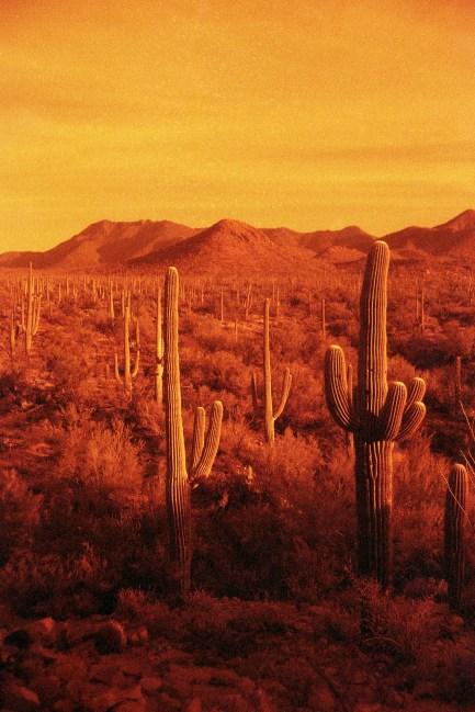 Arizona film032edit