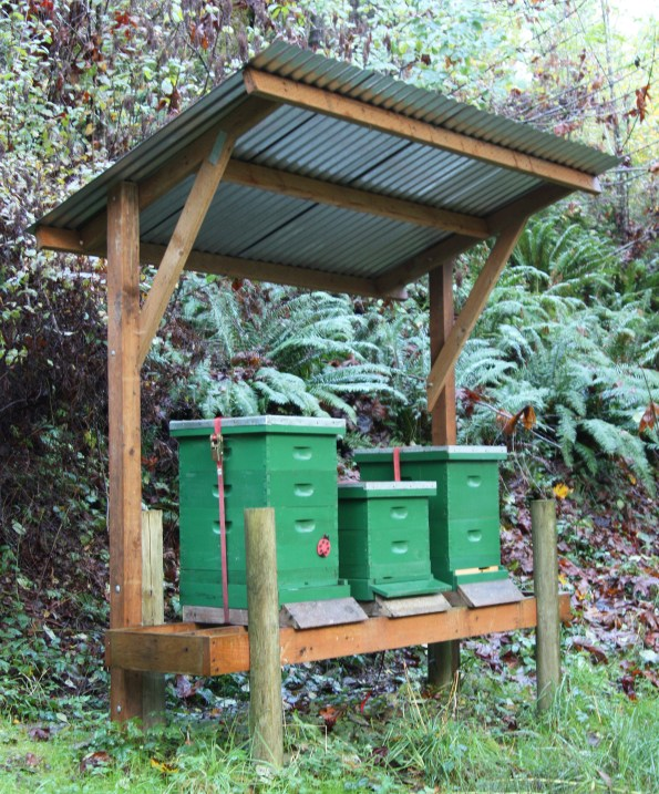 This covered hive stand also gives good protection for most non-windy rains.