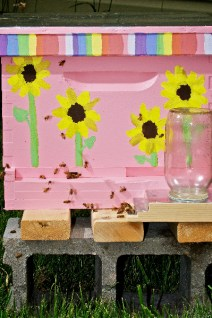 Pink hive by AndrewPotterPhoto.com. See Shanna's blog at HoneyPotters.
