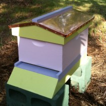 This hive by Cindi G is too pretty for bees!
