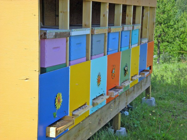 The colorful bee coop is attractive to bees as well as humans.
