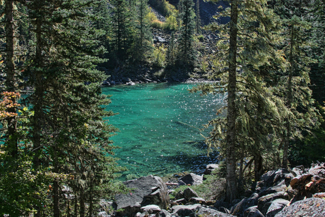Lindeman Lake, Chilliwack Provincial Park, Canada. © Rusty Burlew.