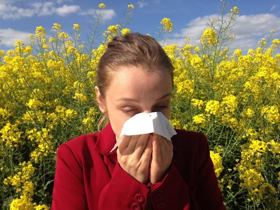 allergies girl blowing nose yellow flowers