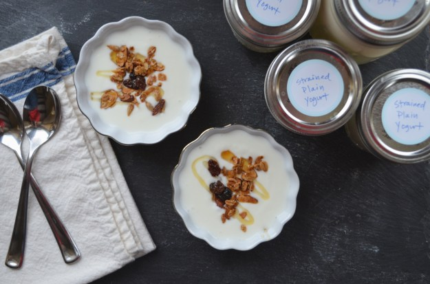 Homemade Granola and Yogurt