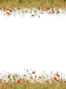 honey cup waters meadow pattern page interior