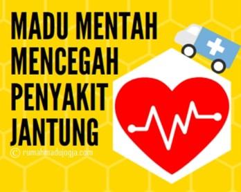 madu mentah cegah sakit jantung