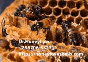 Honey love spells in UK