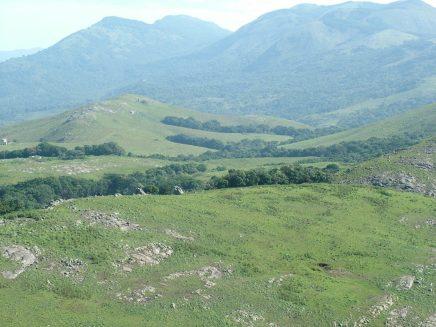 Grasslands of Munichikuni in Hasanur