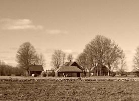 Nahkanuia ja naaberkülad