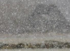 Ootamatu lumesadu