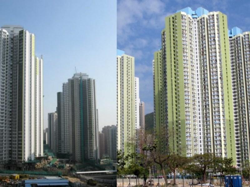hong kong estates lead choi fook estate un chau estate scandal
