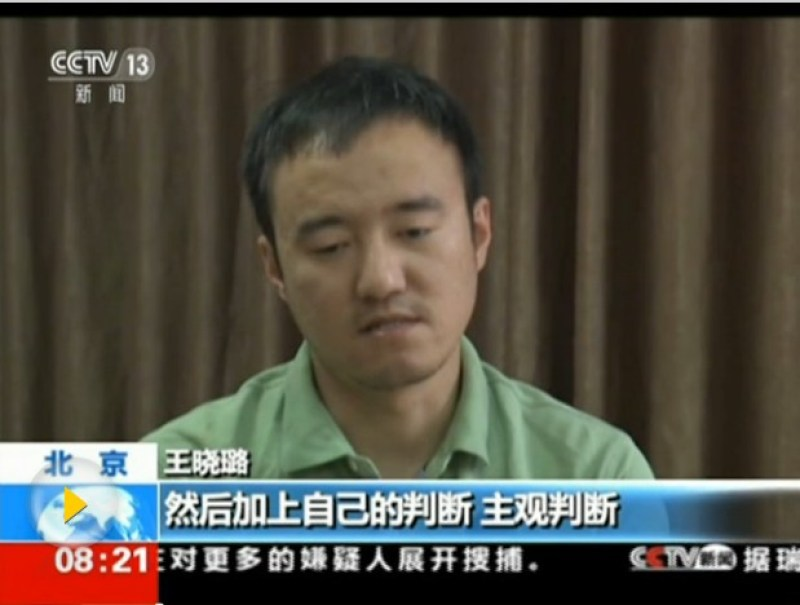 Journalist Wang Xiaolu. Photo: CCTV 13