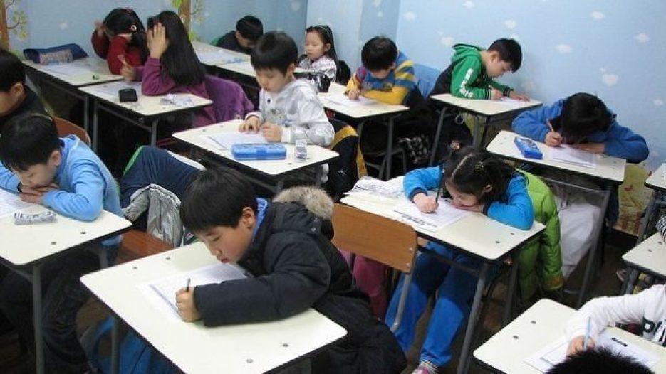 Primary school students.