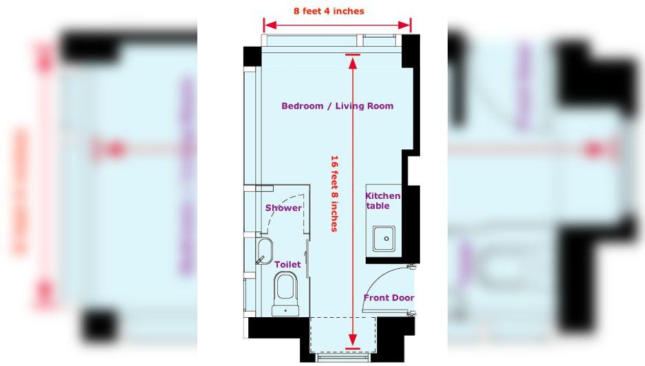 mosquito sized apartment