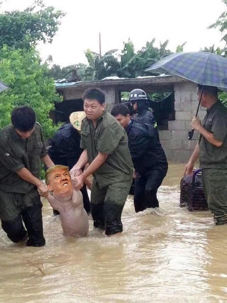flood pig smiling
