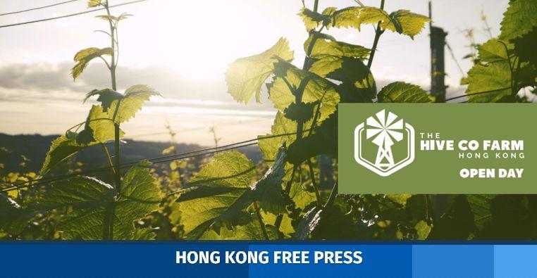 the hive cofarm hong kong