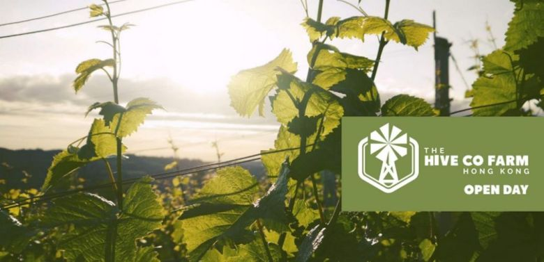 the hive co-farm hong kong