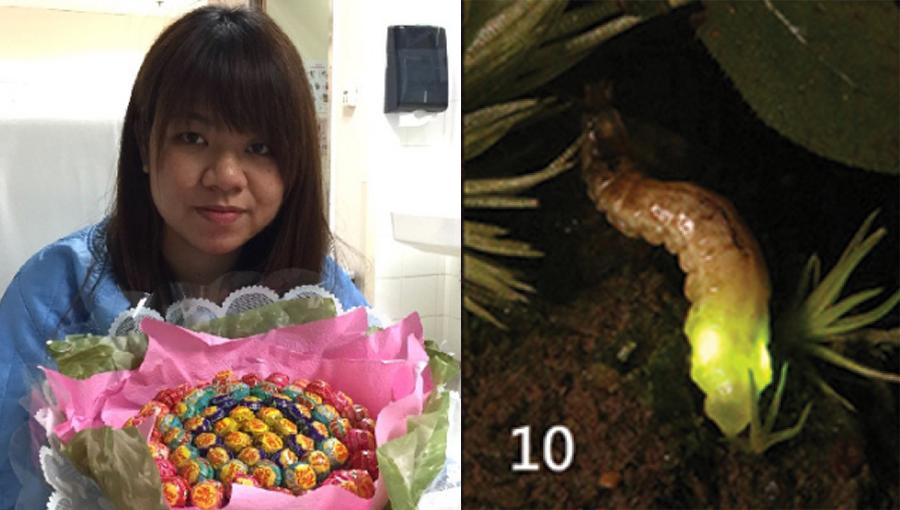 Momo Cheng Hoi-yan