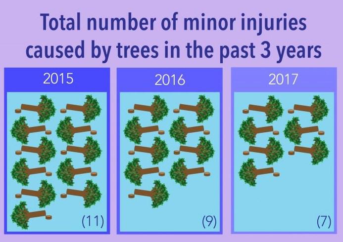 Tree felled 2017
