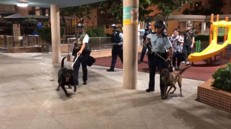 riot police dog